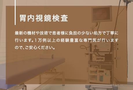 胃内視鏡検査 最新の機材や技術で患者様に負担の少ない処方で丁寧に行います。1万例以上の経験豊富な専門医が行いますので、ご安心ください。